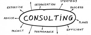 How The Career Consulation Is A Value As An Expat Thespian